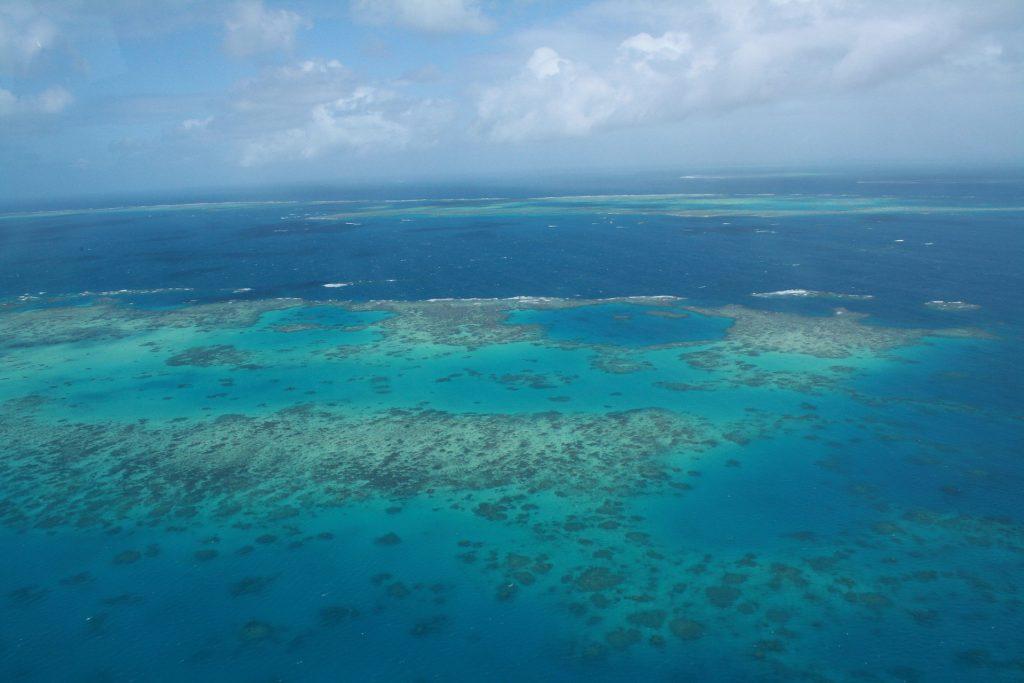 Cairms Barrera de Coral