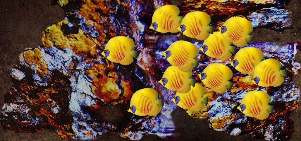 Peces en arrecife coral