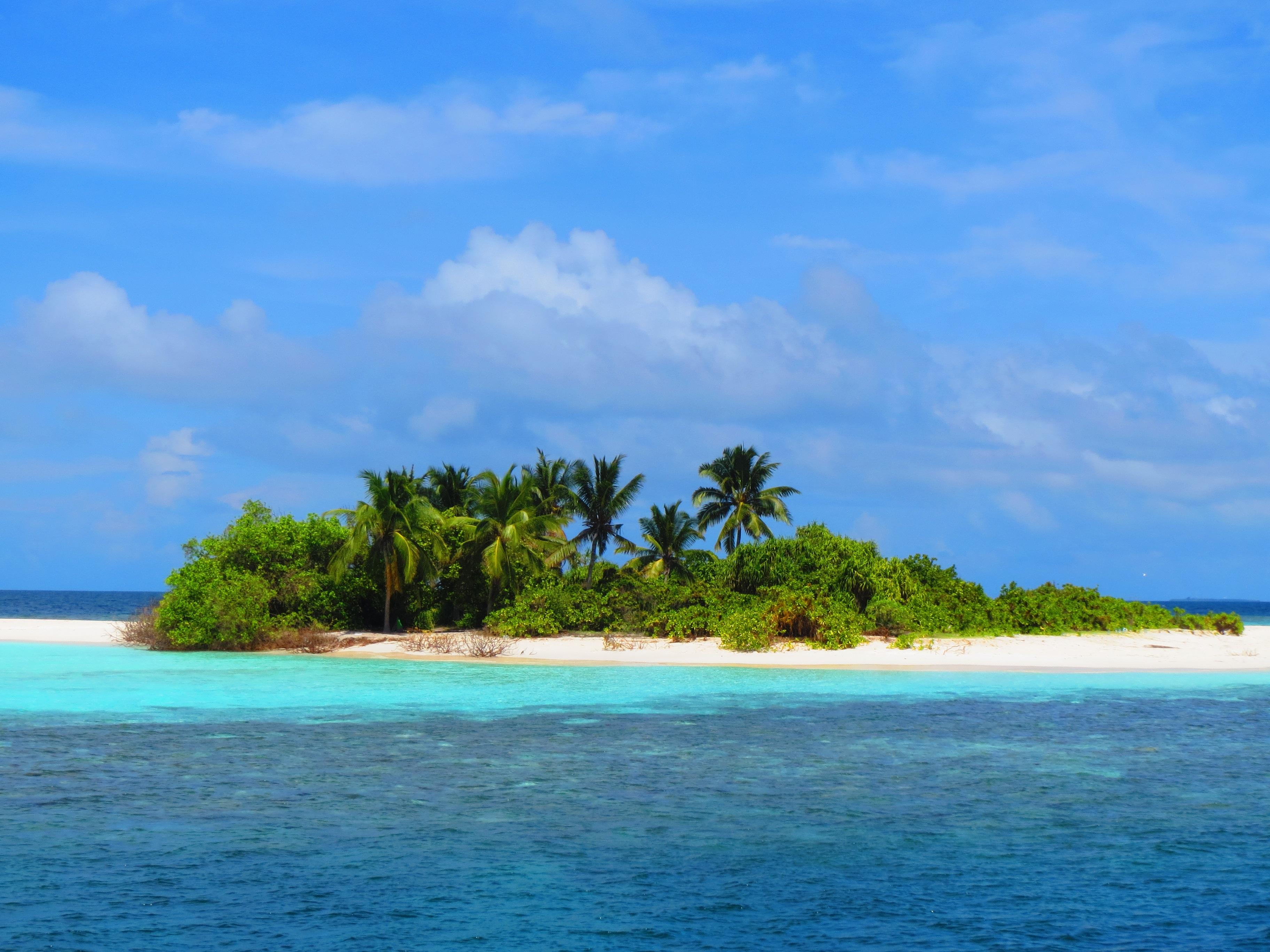 Mauricio isla