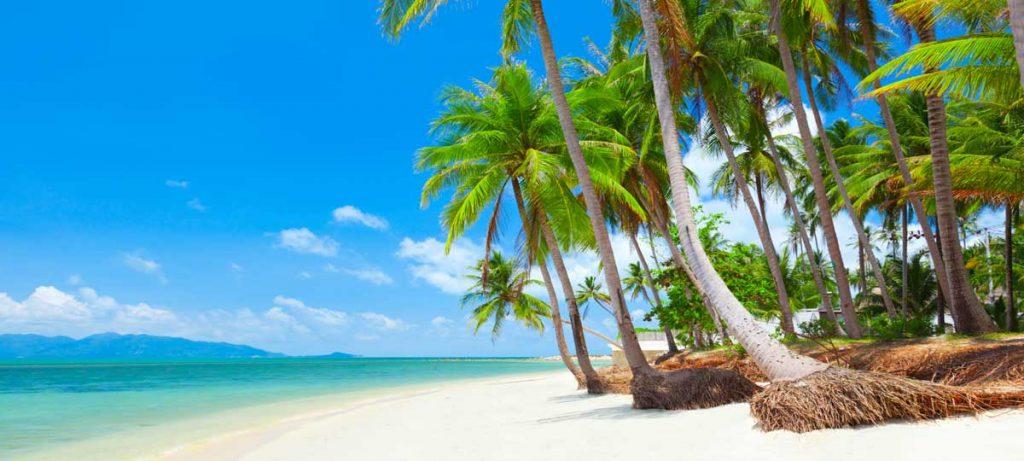 Playas koh samui