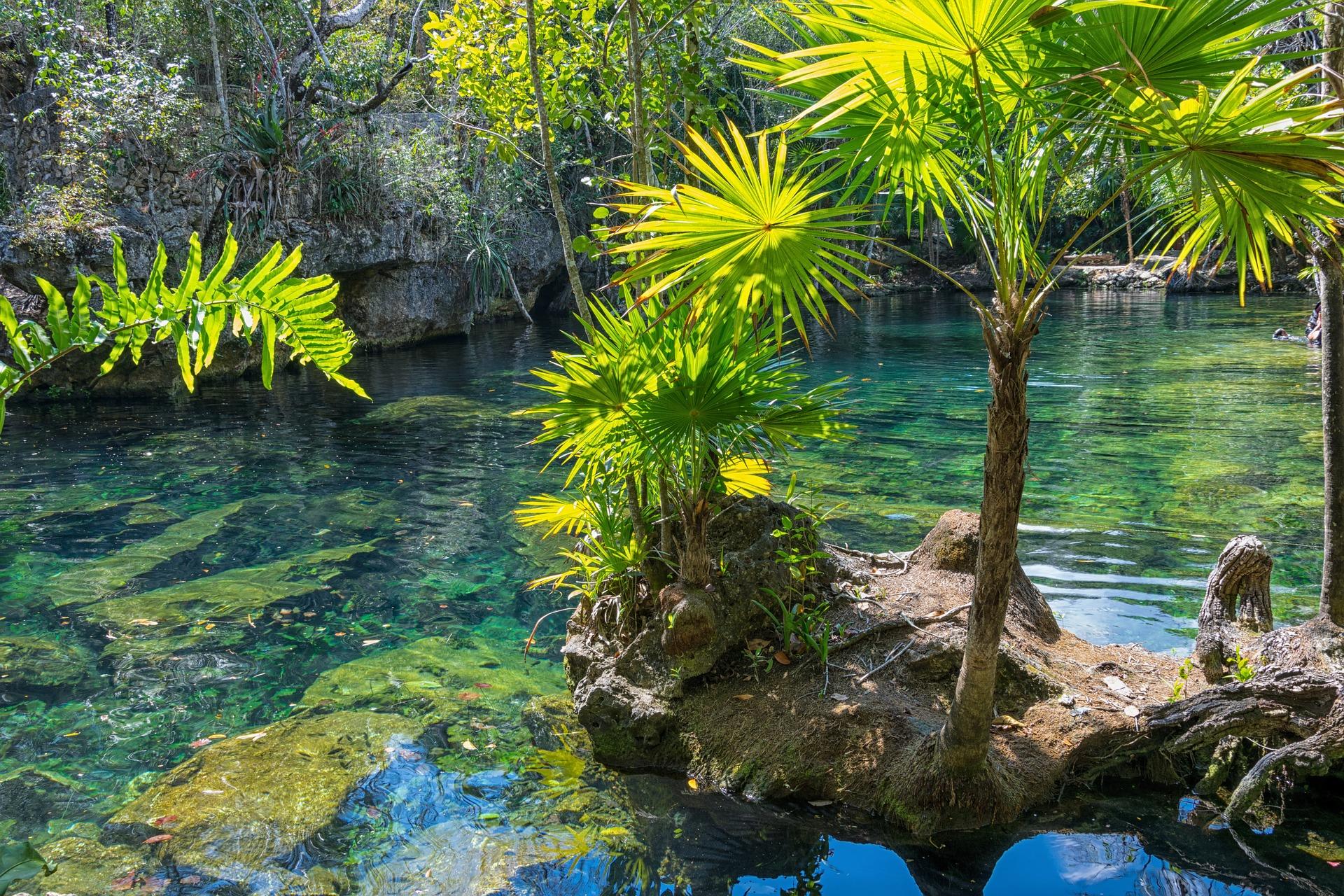 Cenote viaje a riviera maya