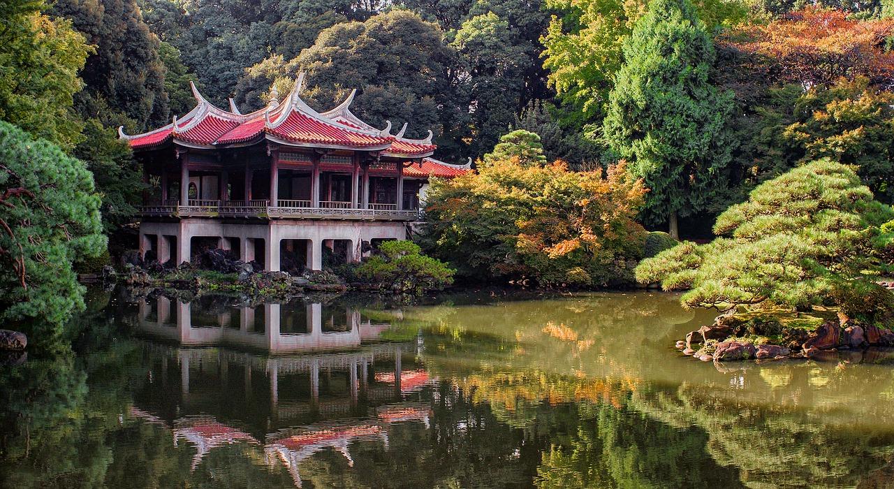 Tokyo jardín otoño